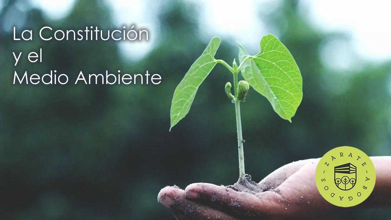 Medio ambiente en la Constitución mexicana