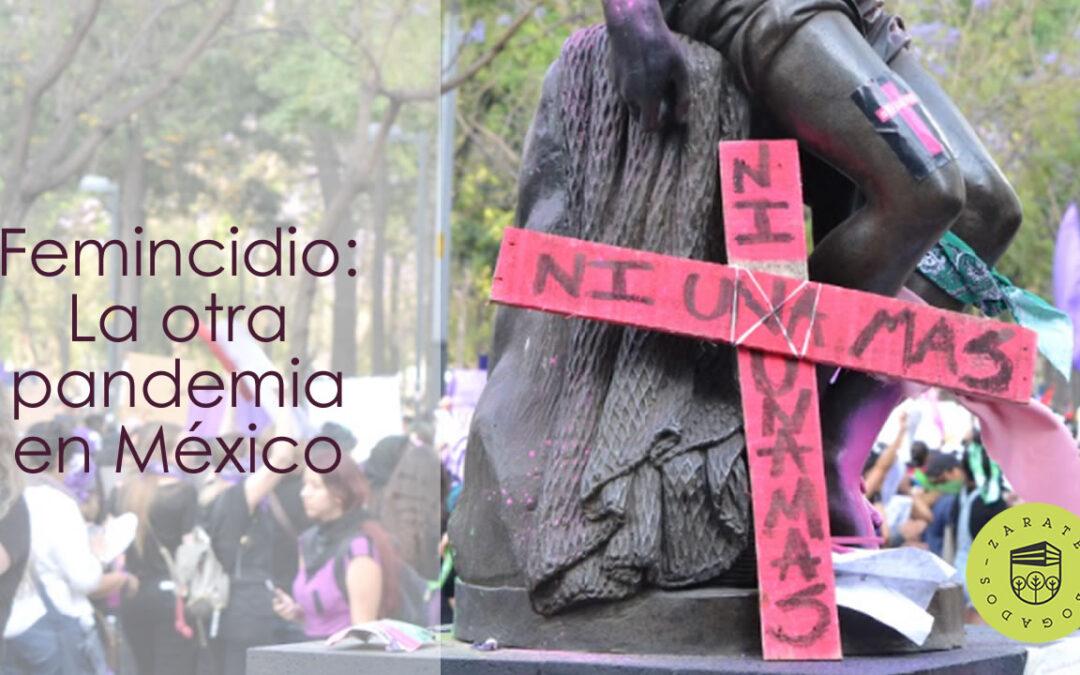 Feminicidio: La otra pandemia de México