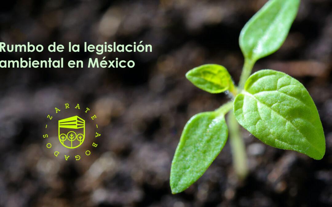 Rumbo de la legislación ambiental en México